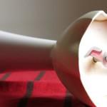 Brotaufstrich des Monats: Das Wieso und Weshalb