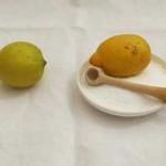 So was von kein Rezept: Salzzitronen