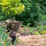 Aus dem Garten in den Topf: Britta Freith, Hinterm Stall die Blumen