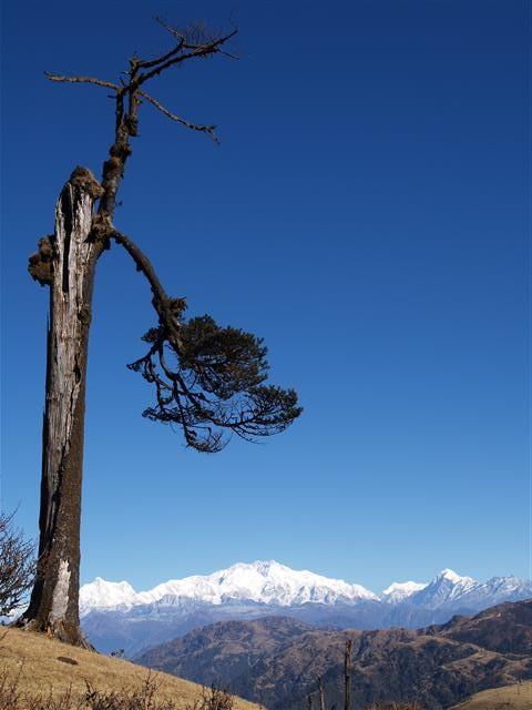 Blick auf die Kanchenjunga-Gruppe