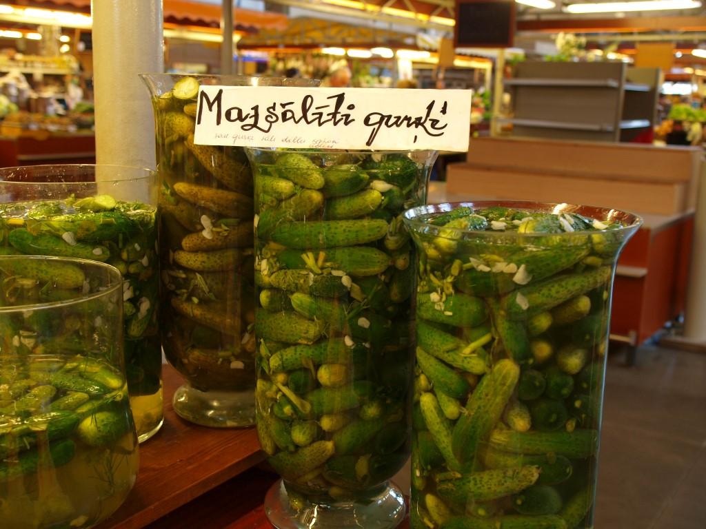 Lettische Salzgurken (Mazsaliti gurki) in verschiedenen Fermentationsstadien