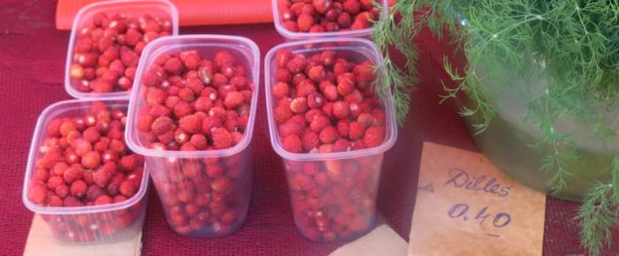 11 kulinarische Tipps für Lettland und Estland (und 1 kulinarisches Rätsel)