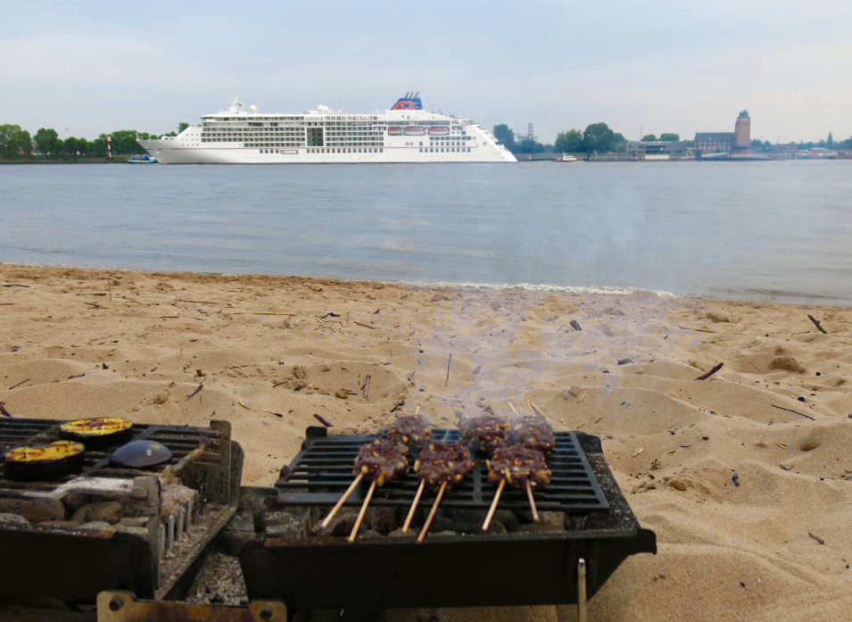 Grillen am Elbstrand